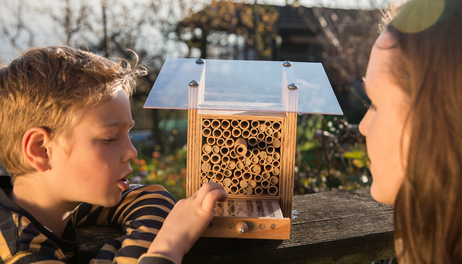 Bienen Partner meier ist partner wildbieneundpartner ch garten center meier